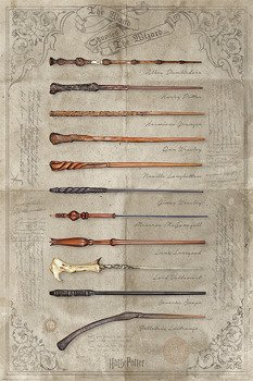 plakat HARRY POTTER -  THE WAND CHOOSES THE WIZARD