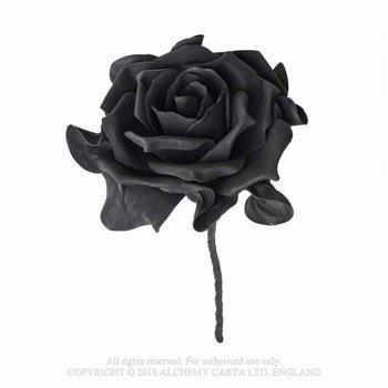 róża czarna SINGLE BLACK ROSE